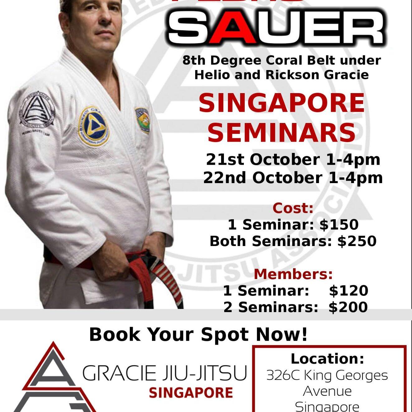 Pedro Sauer Seminar 2017